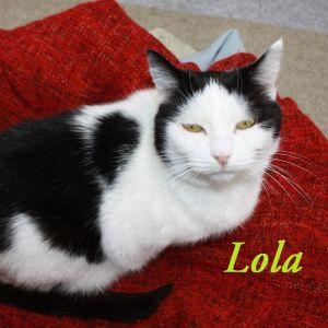 Meet Lola