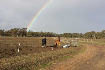 Rainbow over BAWCS Huntly property