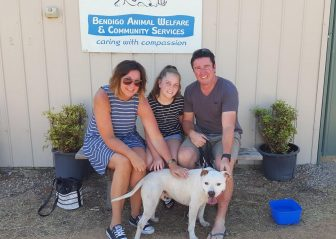 clyde-adopted