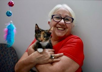 Stormy Adopted1